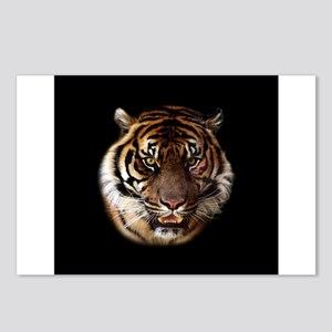 Go Wild Tiger Postcards (Package of 8)