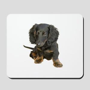 Black brindle Dachshund doxie Mousepad