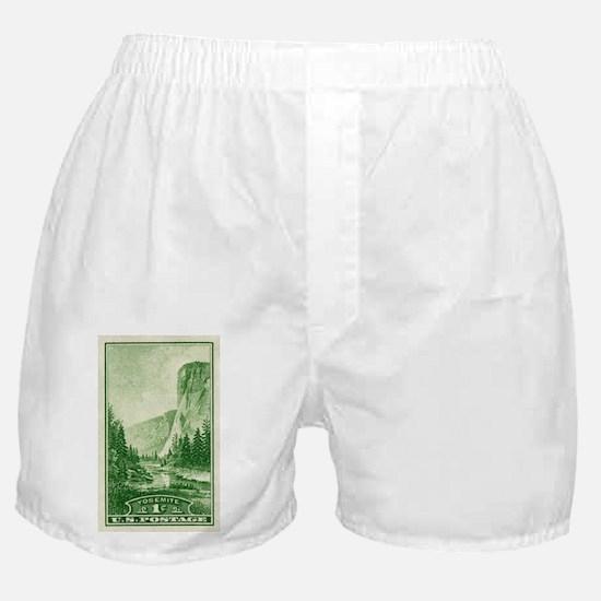Cute Geyser Boxer Shorts
