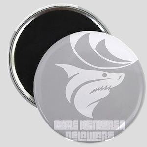 Delaware - Cape Henlopen Magnets