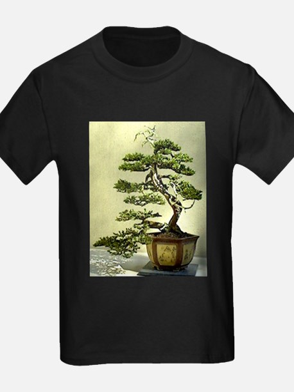 Cypress T