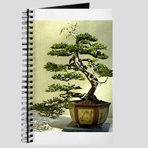 Cypress Journal