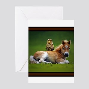 Colt with Owl Greeting Cards
