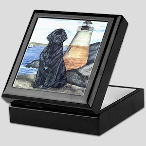 Newfoundland Lighthouse Dog - Keepsake Box