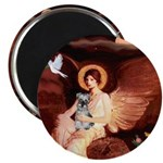 Angel / Min Schnauzer 2.25