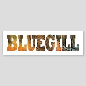 Bluegill Fishing Sticker (Bumper)