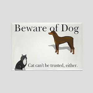 Don't Trust the Cat Magnet