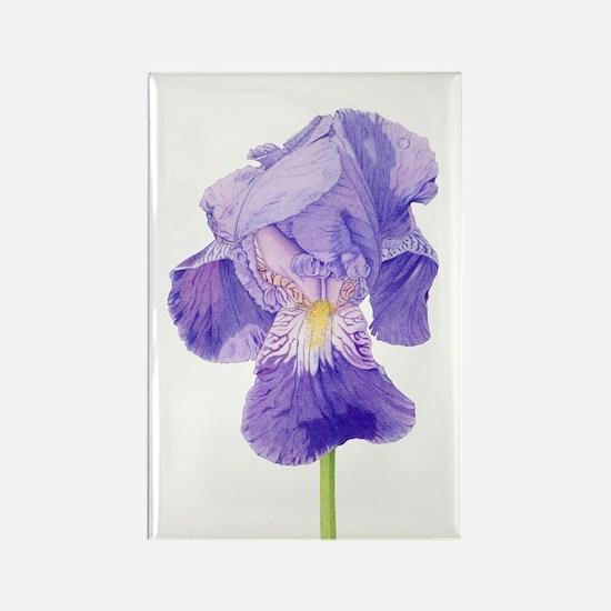Purple Iris Rectangle Magnet (10 pack)