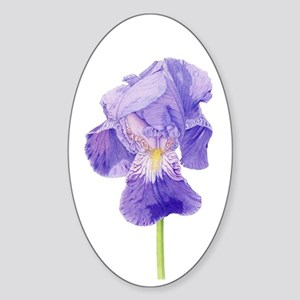 Purple Iris Oval Sticker