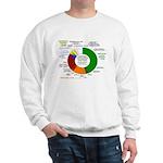 Psychedelic Donut Sweatshirt