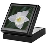 White Daffodil Keepsake Box