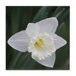 White Daffodil Tile Coaster