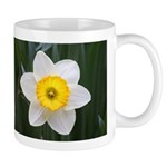 Yellow and White Daffodil Mug