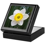 Yellow and White Daffodil Keepsake Box
