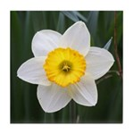 Yellow and White Daffodil Tile Coaster
