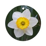 Yellow and White Daffodil Ornament (Round)