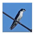 Tree Swallow Tile Coaster