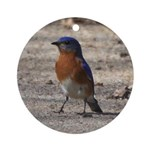 Bluebird Ornament (Round)