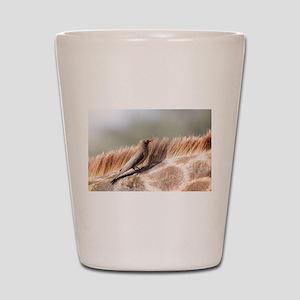 Oxpecker on a giraffe Shot Glass