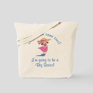 Dream Future Big Sis Tote Bag