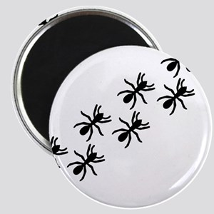 Black Ant Trail Magnet
