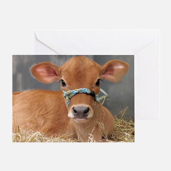 Cute Jersey Calf Greeting Card