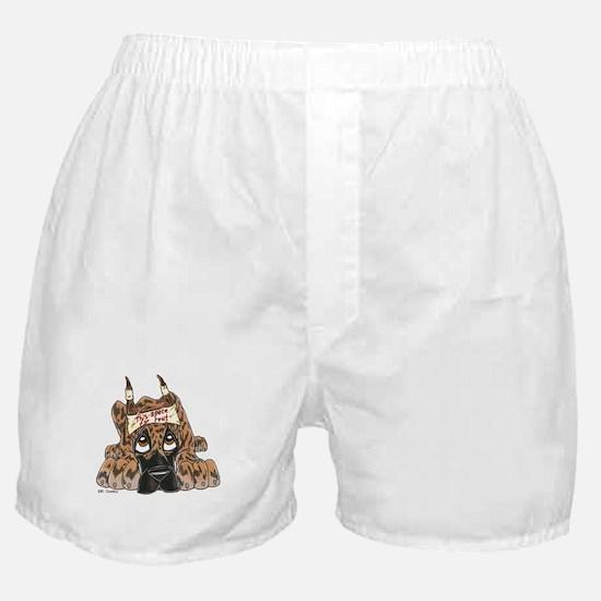 DE Brdl Space For Rent Boxer Shorts