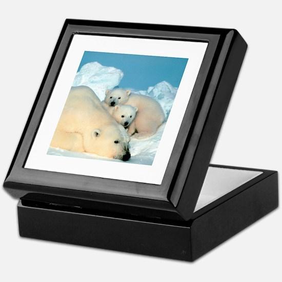 Lazy Polar Bears Keepsake Box