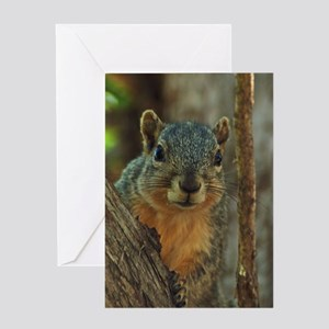 Squirrel Greeting Card