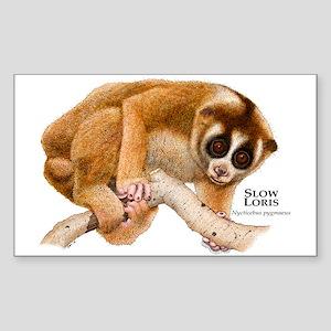 Slow Loris Rectangle Sticker
