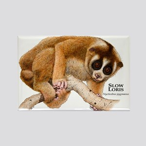 Slow Loris Rectangle Magnet