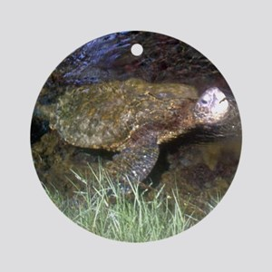 Heads Up Sea Turtle Ornament (Round)