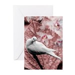 Dove and Orchid Greeting Cards (Pk of 10)