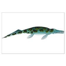 Cymbospondylus Posters