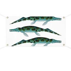 Cymbospondylus Banner