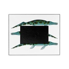 Cymbospondylus Picture Frame