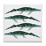 Cymbospondylus Tile Coaster