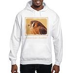 American Kestrel Hooded Sweatshirt