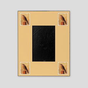 American Kestrel Picture Frame