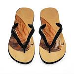 American Kestrel Flip Flops