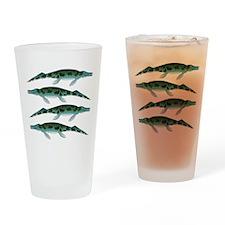 Cymbospondylus Drinking Glass