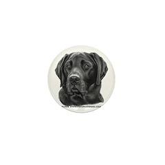 Diesel, Black Lab Mini Button (100 pack)