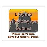 Littering kicks Buttes Small Poster
