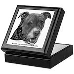 Roxy, Pit Bull Terrier Keepsake Box