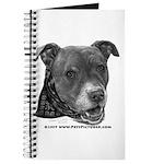 Roxy, Pit Bull Terrier Journal