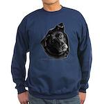 Corvis, Black Lab Mix Sweatshirt (dark)