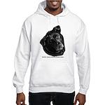 Corvis, Black Lab Mix Hooded Sweatshirt