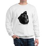 Corvis, Black Lab Mix Sweatshirt