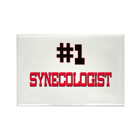Number 1 SYNECOLOGIST Rectangle Magnet