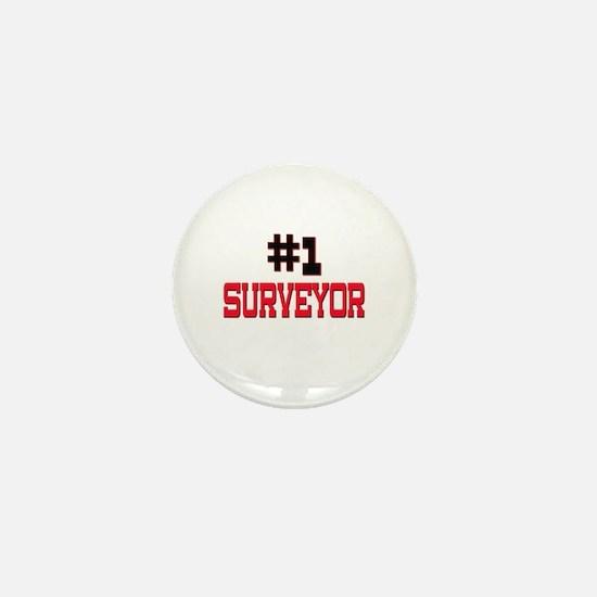 Number 1 SURVEYOR Mini Button